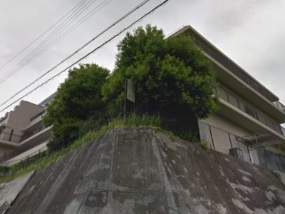 春日井市 介護老人保健施設(老健) 特定医療法人晴和会 老人保健施設 忘れな草の写真